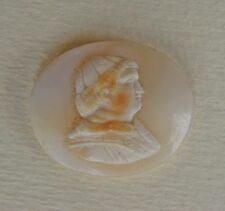 VICTORIAN SHELL CAMEO UNMOUNTED - CAMMEO IN CONCHIGLIA DA MONTARE - GRAND TOUR