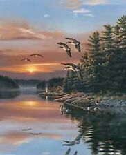 RICK KELLEY S/N GOOSE/lake Print-INTO THE SUN