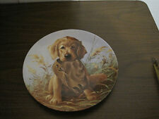 """VINTAGE 1987 EDWIN M. KNOWLES """"CAUGHT IN THE ACT""""--THE GOLDEN RETRIEVER"""