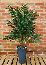 3 ft Phoenix Palm - 403 Leaves - Artificial Plant