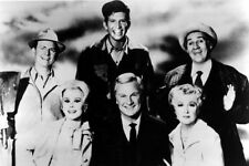 Green Acres Large Poster  24inx36in