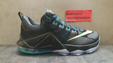 Nike Mens LBJ Lebron James 12 Low Carbon Basketball Shoes (724557 070) Size: 9