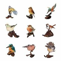 Country Artists Blenheim Birds