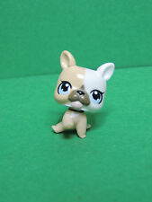 #3588 chien dog chiot Tan cream White Baby Bulldog LPS Littlest Pet Shop Figure