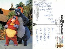 USA florida - The Bare Necessities BALOO AND KING LOUIE (A-L 432)