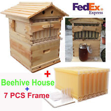 1 x Bee Hive Wooden Brood / Super Frames Box + 7 x Automatic Raw Honey Frames
