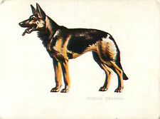 CALENDRIER POCHE POCKET CALENDAR BULGARIA 1983 German Shepherd Berger allemand