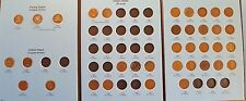 1C Indian Head and Flying Eagle Cent Collection - 36 Coins (all well circulated)