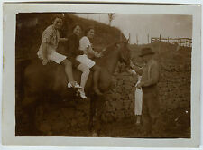 PHOTO ANCIENNE - CHEVAL FAMILLE GAG JAMBES - HORSE LEGS FUNNY - Vintage Snapshot