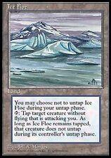 *MRM* FR ice floe - banquise MTG Ice age