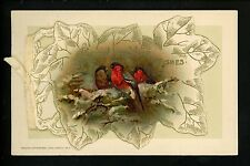 Novelty vintage Open Booklet postcards New Years Winsch 1914 cardinal birds