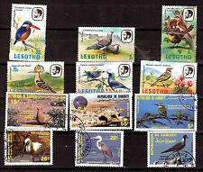 LESOTHO/DJIBOUTI  Oiseaux-Birds :Différentes espèces sédentaires  1m443