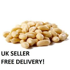 Raw White Blanched Peanuts 1kg, Healthy, Diet, Fibre - Uk Seller, Free Delivery!