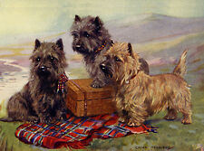 CAIRN TERRIER CHARMING DOG GREETINGS NOTE CARD 3 DOGS WITH PICNIC HAMPER