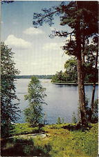 VINTAGE POSTCARD WHITE RIVER - ONTARIO CANADA POSTED IN 1961