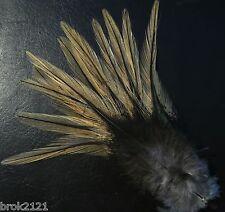 12 PLUMES COQ LEON COLGADERA MIEL fly grade 1 flies fly mosca