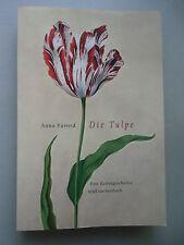 Die Tulpe Kulturgeschichte 2003