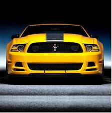 Car Dual Racing Stripes for Mustang  Vinyl Hood Decal Stickers #934