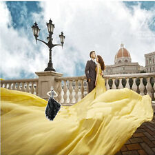 Chiffon Long Train Evening Dress Quinceanera Formal Prom Party Pageant Ball Gown