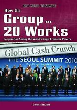 How the Group of 20 Works: Cooperation Among the World's Major Economic Powers (