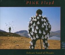 Delicate Sound of Thunder [Box] by Pink Floyd (CD, Nov-1988, 2 Discs,...