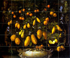 Art Citrus Bartolomeo Bimbi Kitchen Decor Backsplash Ceramic Tile Mural  #253