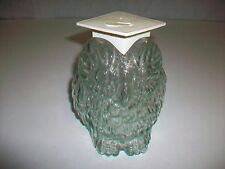 Vintage Clear Glass WISE OLD OWL Coin Bank
