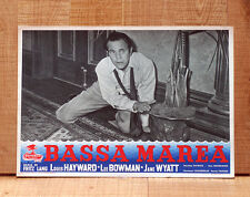 BASSA MAREA poster fotobusta Louis Hayward Fritz Lang House by the River 1950 E9