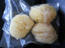 "LOT OF 3 COSMETIC NATURAL SEA SPONGE FACE FACIAL PUFF BRUSH BODY CRAFTS 2.5""-3"""