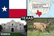 SOUVENIR FRIDGE MAGNET of THE STATE OF TEXAS USA