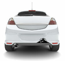 Monster Car Vinyl Decal Sticker