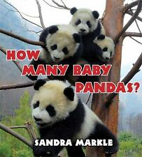 How Many Baby Pandas?-ExLibrary
