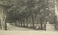 CPA  ANCIENNE PYRENEES ORIENTALES PERPIGNAN ALLEE DES MARRONNIERS PLATANES