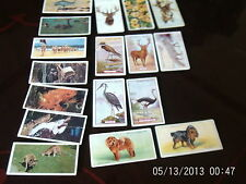 lyons tea cards australia x 7 + 1O other cigarette cards animals