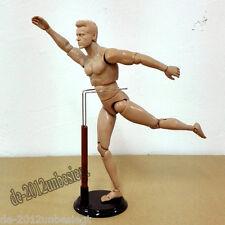 "Human Drawing Model Anatomy Body Muscle Artist Art Figure Display Craft 12"""
