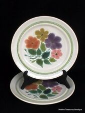 Franciscan Earthenware Floral 2 Dinner Plates Green Band Beautiful