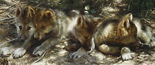 """Pick of the Pack"" Carl Brenders Limited Edition Giclee Canvas"