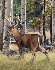 Fall Whitetail by Russell Cobane Art Print Poster - Deer Hunting Wildlife 13x19