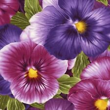 Large Viola Floral Cotton Quilt Fabric by Timeless Treasures Purple Lavender