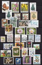 101406/ Blumen und Pflanzen - schönes Lot - o - nichts gerechnet - siehe scan