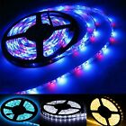 5M 300 600 leds SMD 3528 LED Flexible Fairy Strip Lamp Light Decoration Light