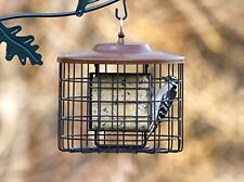 Small Bird Feeder Large Birds and Squirrel Proof Double Suet Hanging Porch Patio
