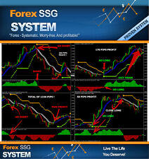 """Forex Indicator mt4 Trend Strategy Forex Trading System """"FX -SSG """""""