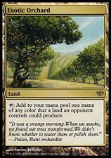 *MRM* FR Verger exotique - Exotic Orchard MTG Conflux