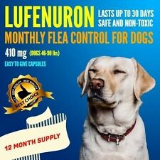 12 Month Supply Flea Control 410mg Dogs Generic Program 46-90 lbs
