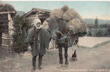 JAPAN :A Japanese Packhorse with Bags of Rice -LANDEKER & BROWN