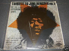 THE LIVE EXPERIENCE BAND Tribute To Jimi Hendrix LP ITALY 1971 Psych PROG ROCK