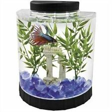 Tetra LED Half Moon Betta Aquarium,1.1-Gallon(29049) convenient feeding hole-FBO