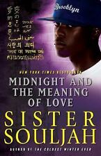 The Midnight: Midnight and the Meaning of Love 2 by Sister Souljah (2011,...