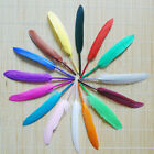20/60/100pc Colroful Natural Goose Feather 4-6 inches Wedding Party Home Decor